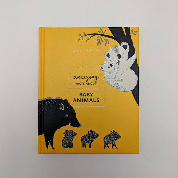Amazing Facts about Baby Animals Picture Book by Maja Safstrom
