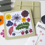 Microfleur 5-Inch Microwave Flower & Seaweed Press