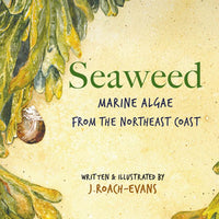 Seaweed Marine Algae from the Northeast Coast · Picture Book by Joanne Roach-Evans