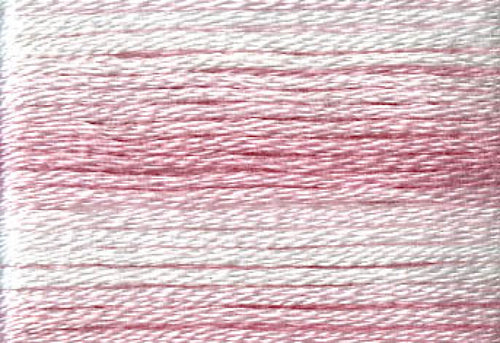 8004 Pinks Variegated Floss