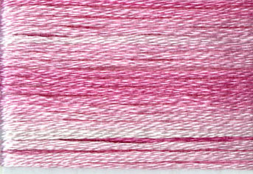 8009 Pinks Variegated Floss