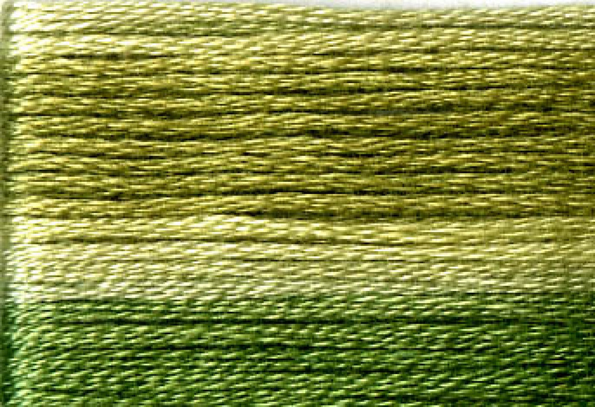 8016 Dark Greens Variegated Floss