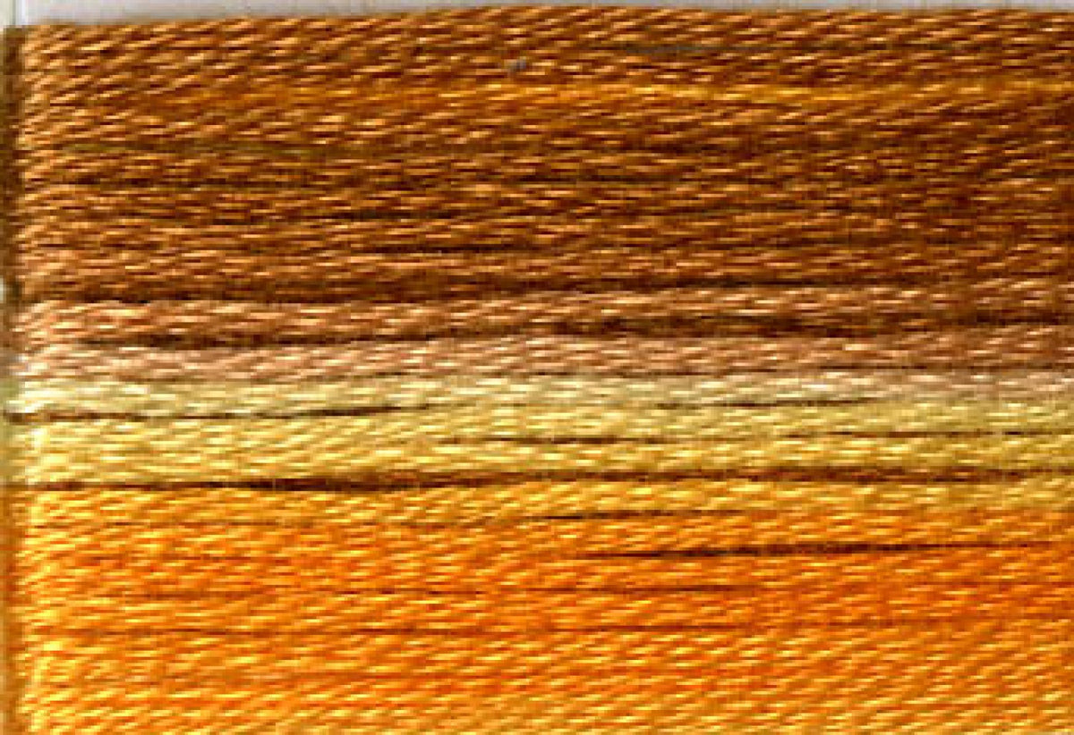 8029 Yellow Orange Brown Variegated Floss
