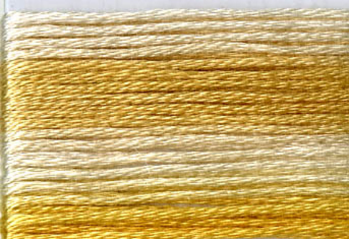 8031 Yellows Variegated Floss
