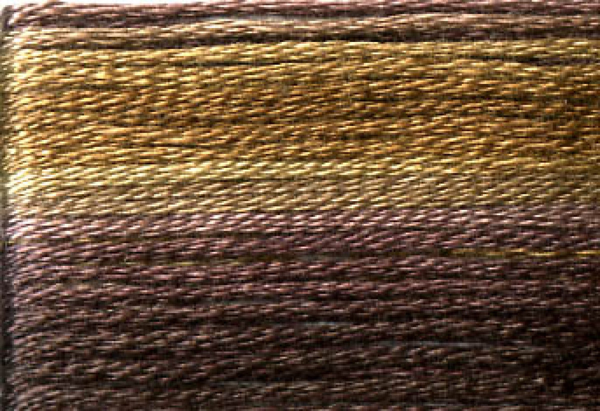 8042 Dark Browns Variegated Floss