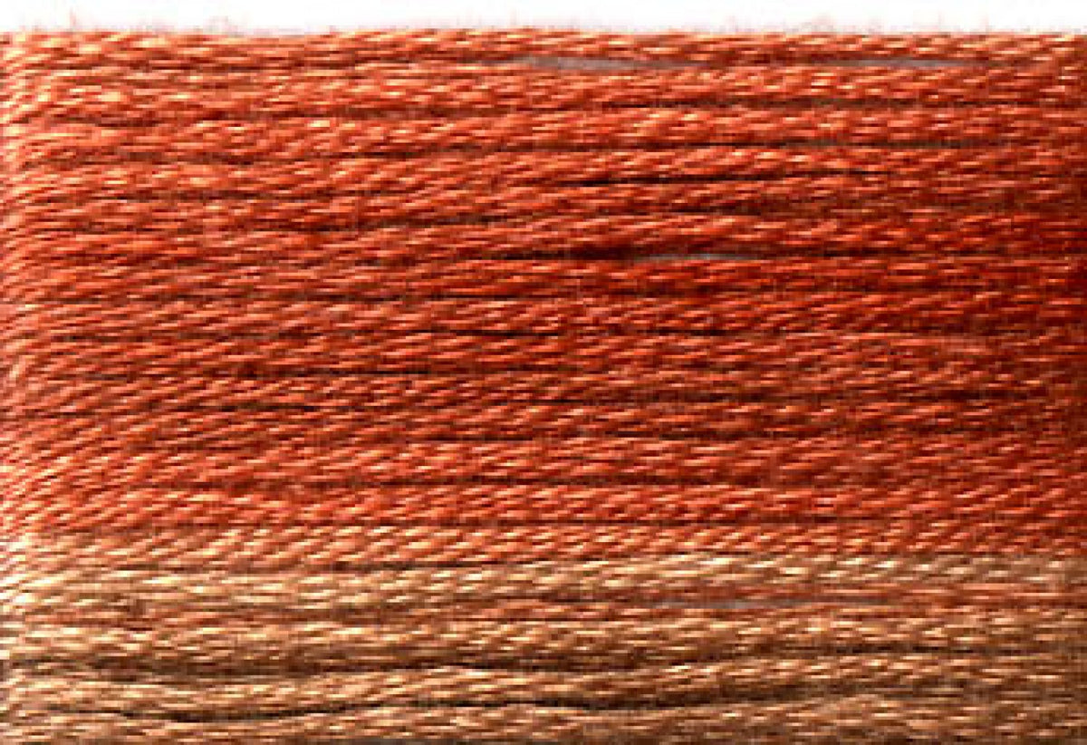 8043 Browns Rusts Variegated Floss