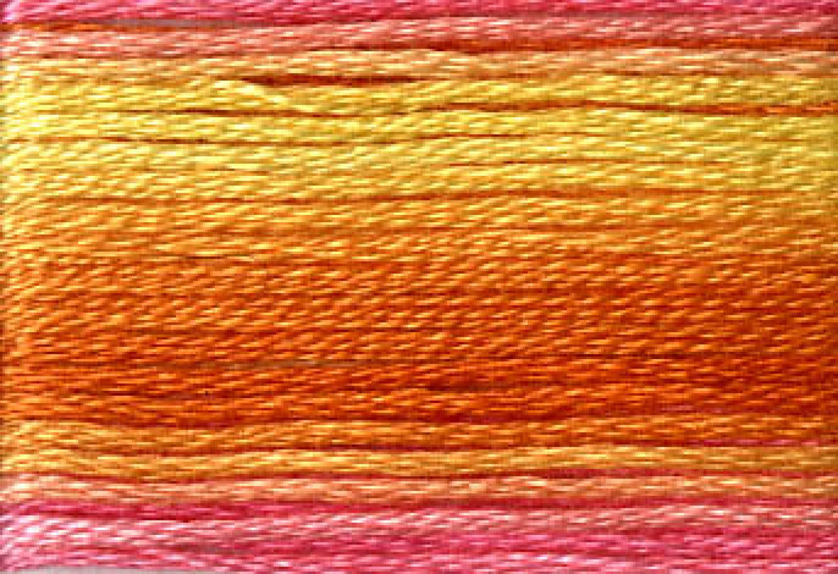 8046 Yellow Orange Pink Variegated Floss