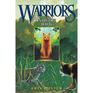 Warriors: A Children's Chapter Book Series Overview
