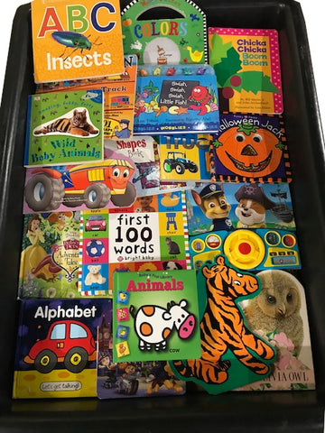 baby board books large size sold by the book bundler