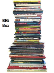 big box of kids books sold by the book bundler