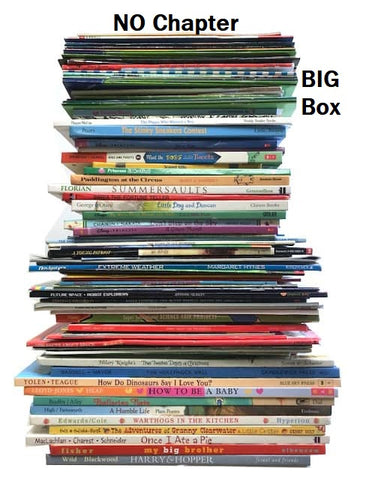 cheap discount children's books by the box BIG box size