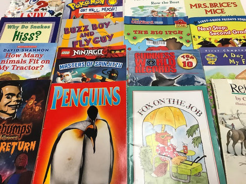 scholastic small paperbacks and readers sold by the book bundler