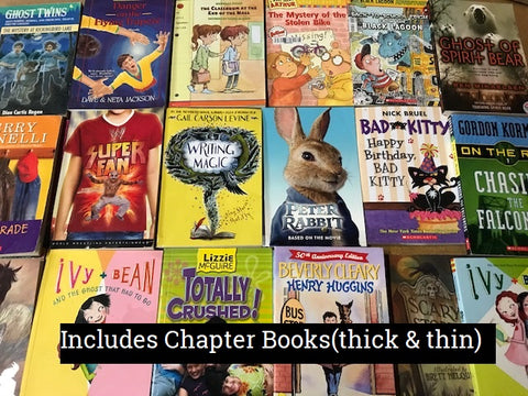 kids chapter books in our mixed book box, sold by the book bundler