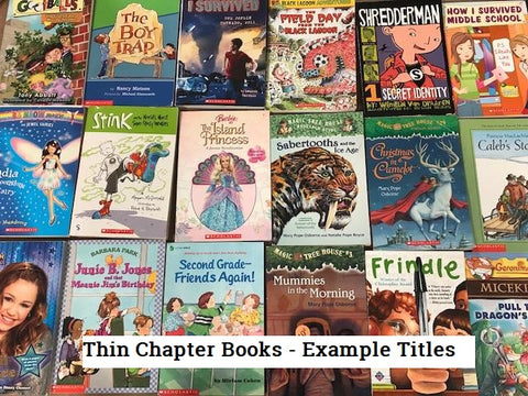 kids chapter books, magic treehouse, diary of a wimpy kid, junie b jones and many more sold by the book bundler