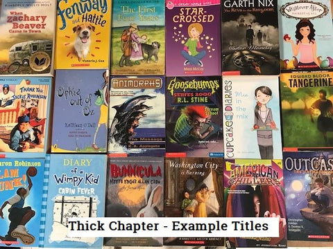 kids chapter books, hunger games, divergent, young adult books sold by the book bundler