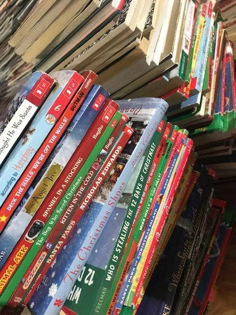 TheBookBundler Christmas Books 10 Books Chapter Books<br>Christmas Books(ages 7-13)