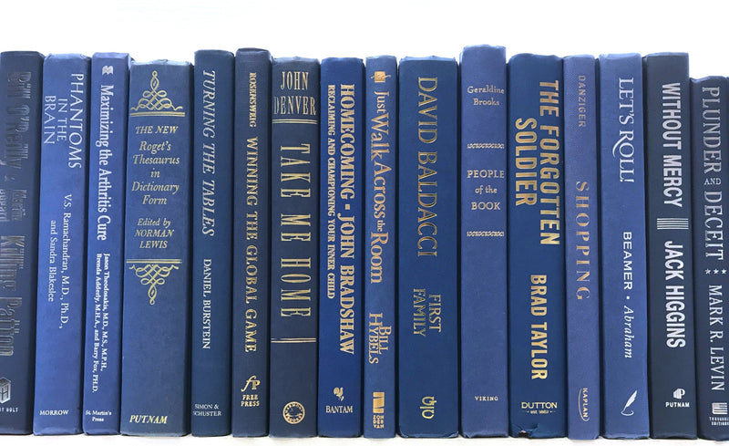 TheBookBundler Hidden 10-12 books (Foot) Decorative Modern Mid-Blue Books by the Foot