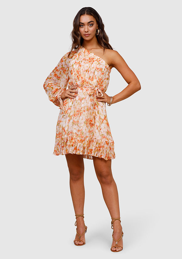 Spring Meadows Mini Dress