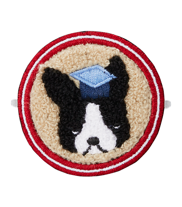 Boston Terrier Patch - All Cases