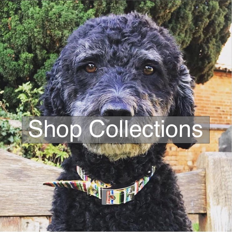blossomco-handmade-dog-collars-lead-collections