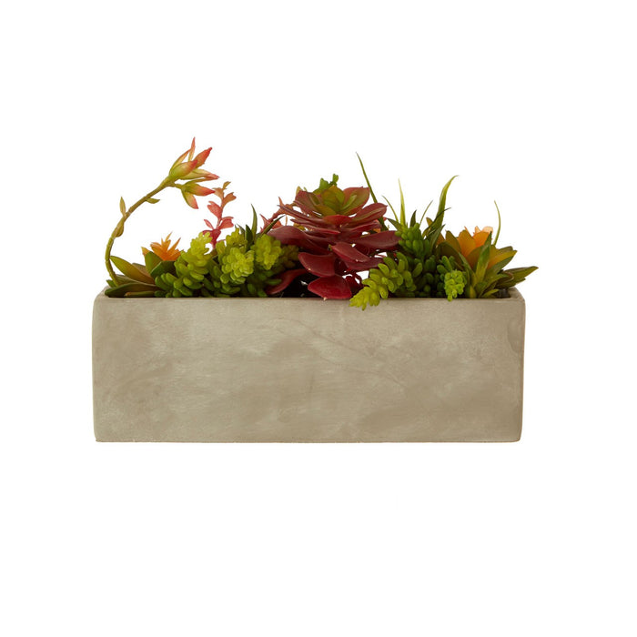 Faux Succulent Plants In Rectangular Natural Cement Pot