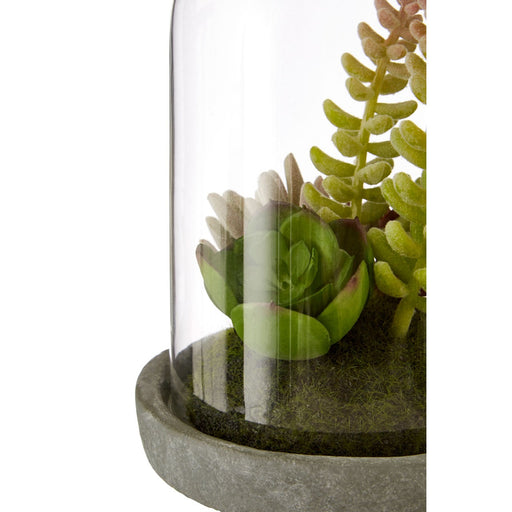 Faux Succulent Plant In Glass Dome