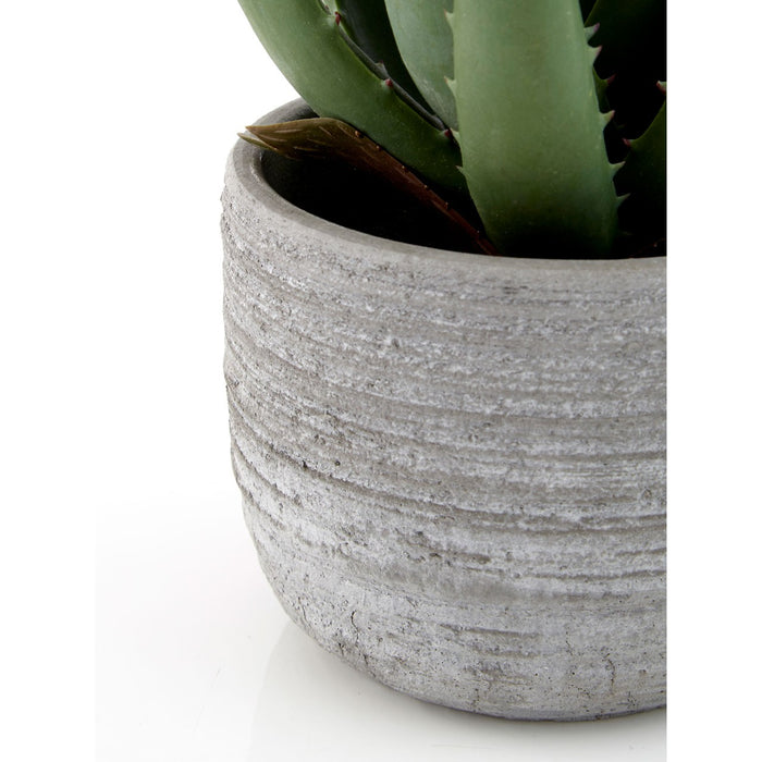 Faux Aloe Vera Plant In Rounded Cement Pot