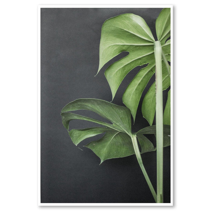 Monstera Plant Portrait Art Print No Frame