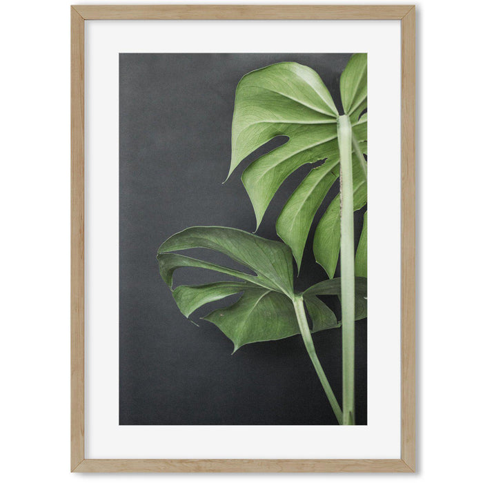 Monstera Plant Portrait Art Print Oak Frame