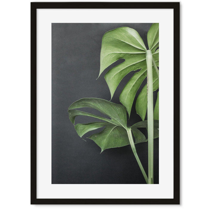 Monstera Plant Portrait Art Print Black Frame