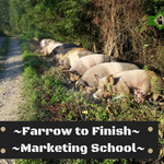 Farrow to Finish & Marketing Schools