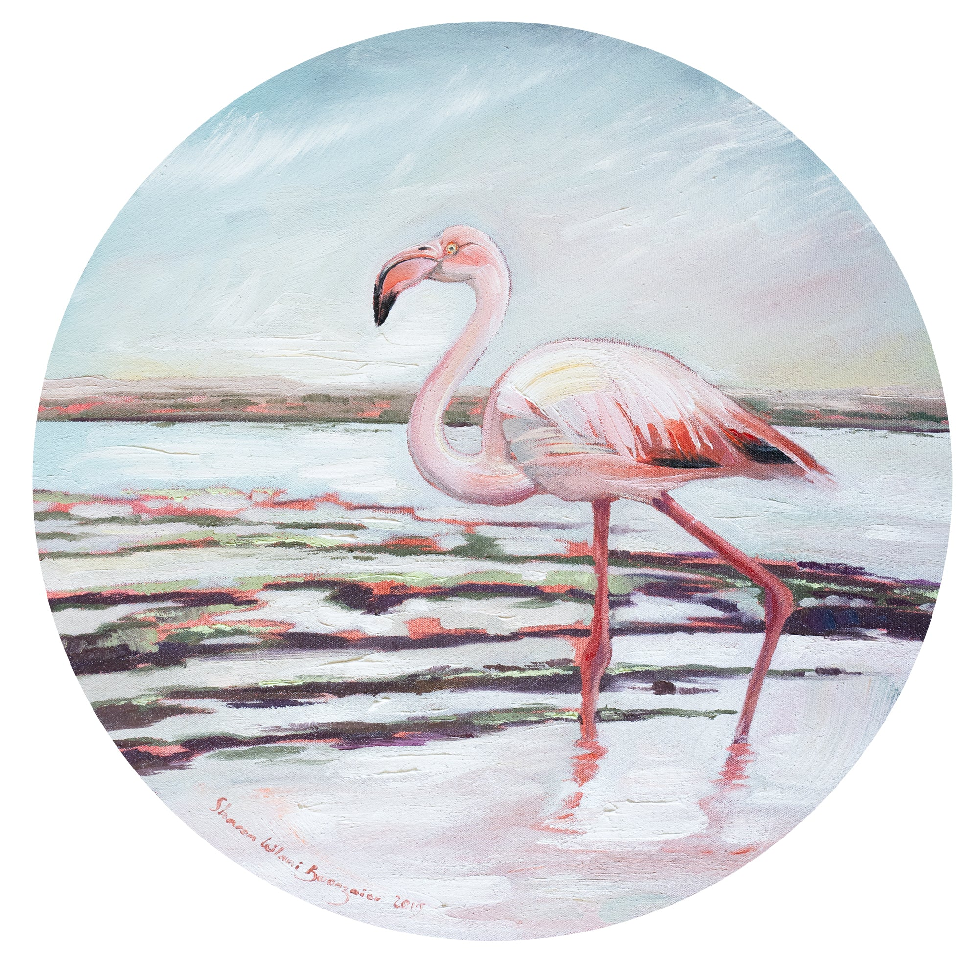 West Coast Flamingo
