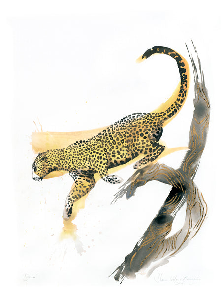 Striker Leopard