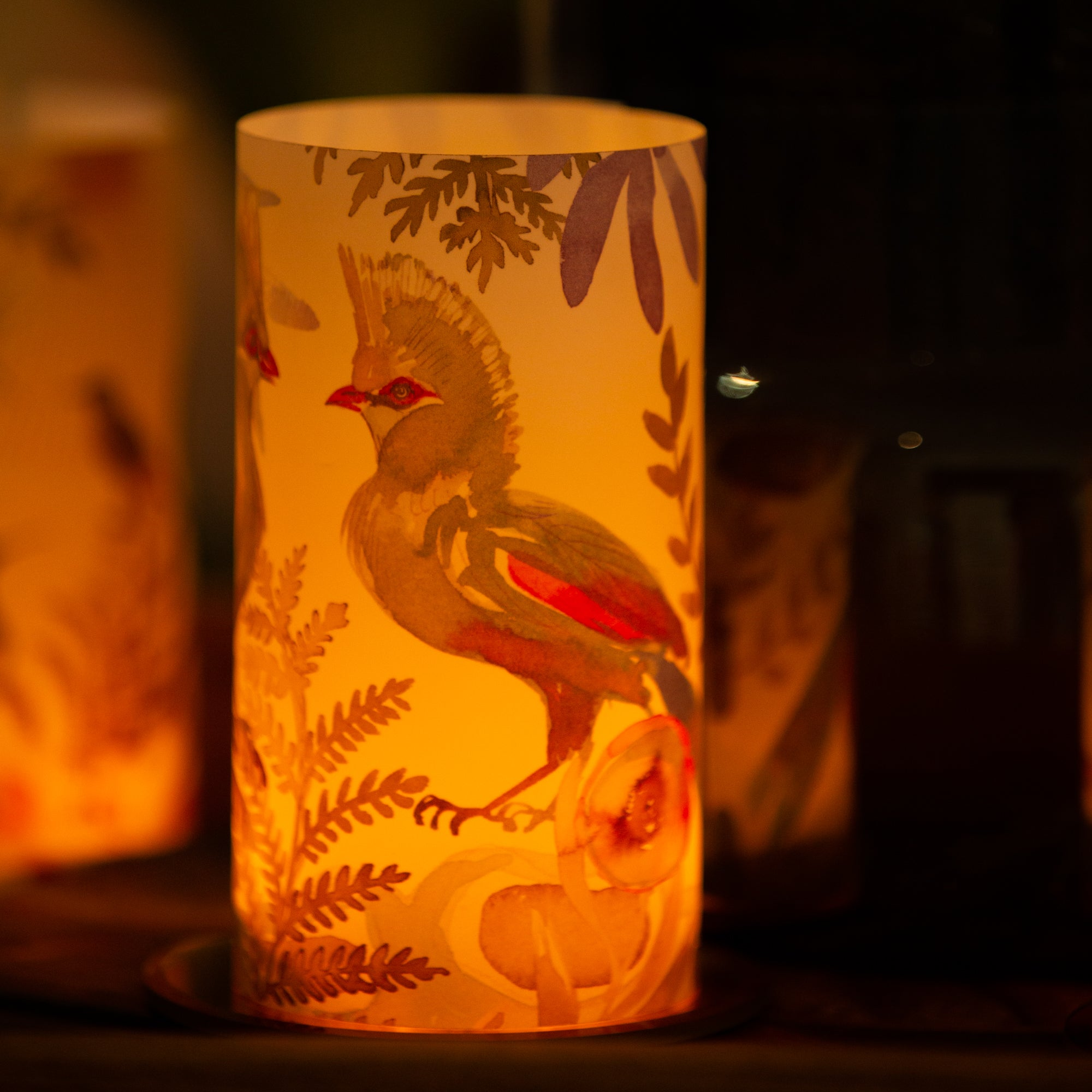Loerie Candle Shade