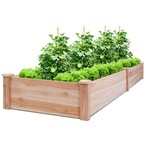Wooden Raised Vegetable Garden Bed