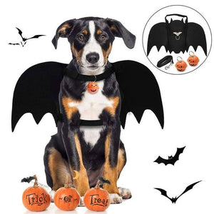 Dog Leash - Bat Wings Halloween Costumes For Dogs With Dog Leash And Pumpkin Bells