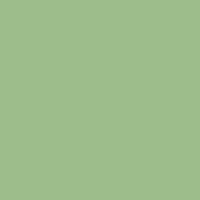 Solid Color - Fern Green - Apple Butter