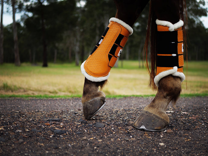 Dusk Tendon Boots - Limited Edition