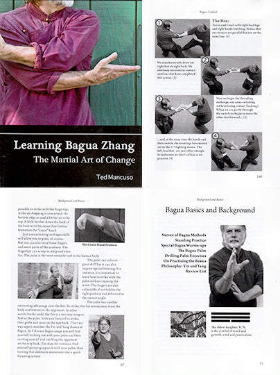 Learning Bagua Zhang Chinese Martial Art Change book Ted Mancuso Qigong fighting