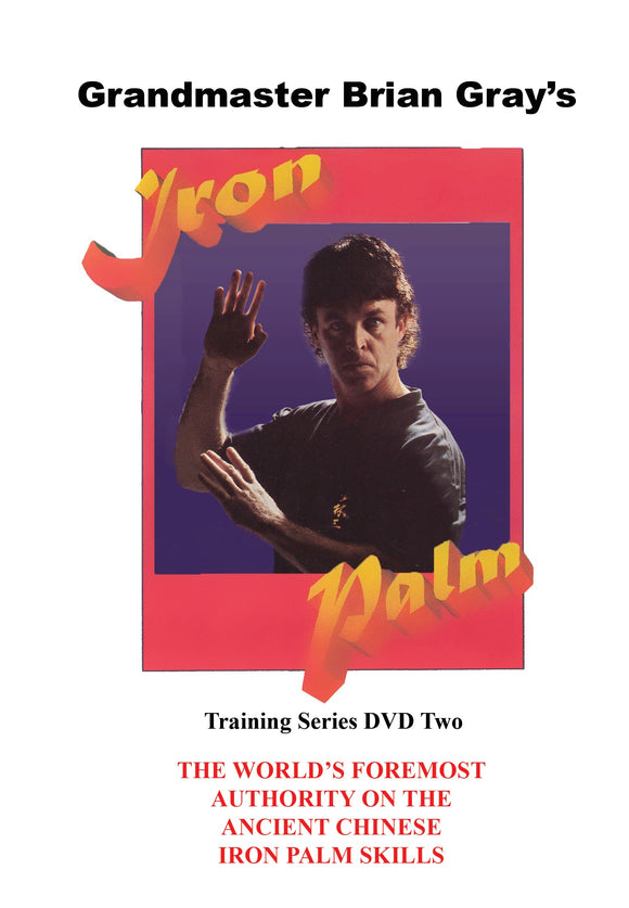 Kung Fu Iron Palm Training #2 Breathing Focus Speed Centering DVD GM Brian Gray