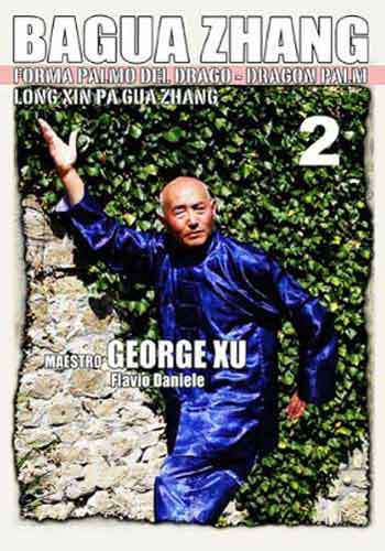 Bagua Zhang Dragon Palm #2 DVD Xu