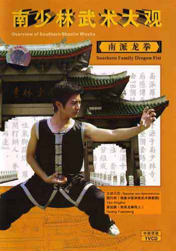 Dragon Fist Kung Fu DVD