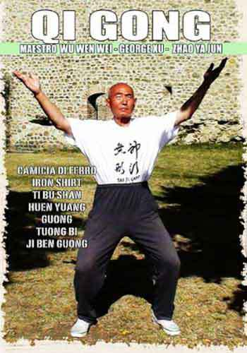 Qi Gong DVD We Xu Jun