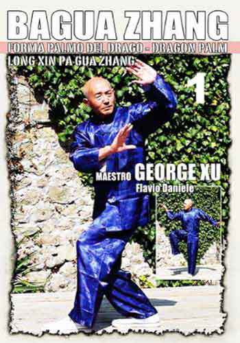 Bagua Zhang Dragon Palm #1 DVD George Xu