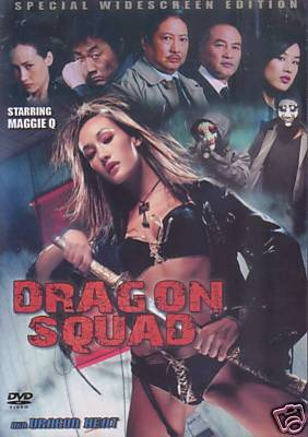 Dragon Squad Dragon Heat - Sexy Hong Kong Action movie DVD Maggie Q Sammo Hung