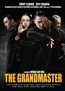 Grand Master Life of Wing Chun Master Ip Man Tony Leung DVD subtitled