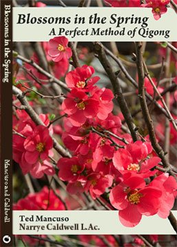 Taoist Blossoms in Spring Perfect Method Qigong DVD Nancy Caldwell Ted Mancuso