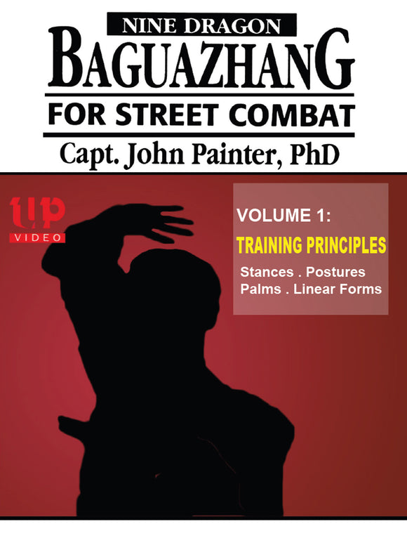Nine Dragon Baguazhang Street Combat #1 Postures & Eight Palms DVD John Painter