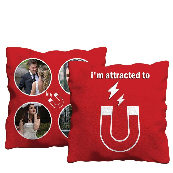 I'm Attracted to You Cushion
