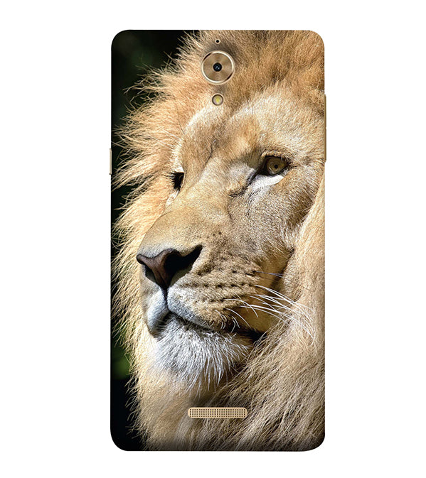 Lion Back Cover for Coolpad Mega 2.5D